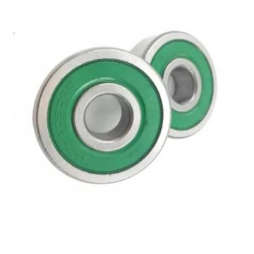 SKF Bearing 6004zzc3, 6004 2rsc3, 6005zzc3, 6005 2rsc3, 6004DDU, 6004rz, 6004VV, Deep Groove Ball Bearing. Stainless Steel Ball Bearing