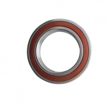 Stainless Steel Needle Roller Bearing HK0408 HK0509 HK0608 HK0810 HK1210 and Also Can Supply Auto Ball Agricultural Bearing