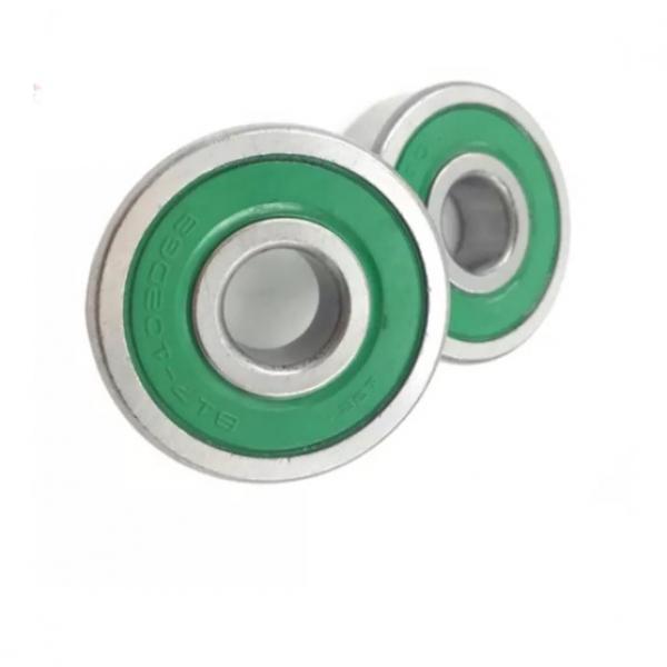 SKF Bearing 6202 6205 6206 6004 1006 6217 6000 6203 6312 6108 6313 6201 #1 image