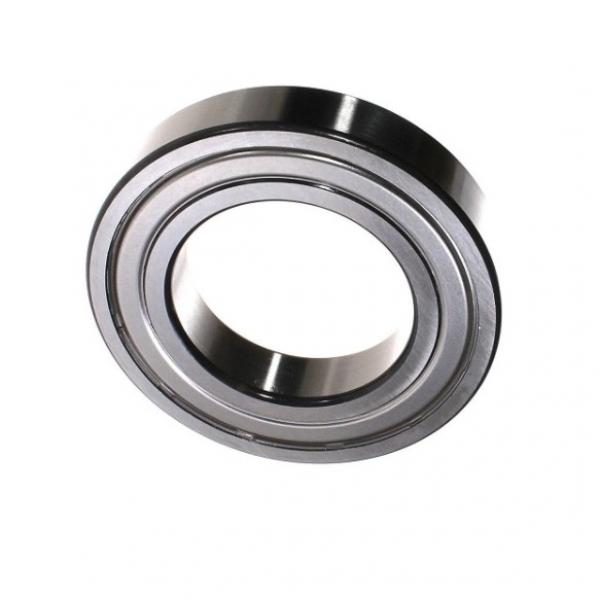 China Small Needle Roller Bearing HK0608 HK0810 #1 image